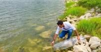 KONUKLU - Göletlere 35 Bin Yavru Balık Bırakıldı