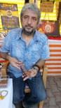 Burhaniye'de Zeytin Çekirdekleri Takı Oldu