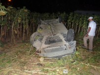 BEŞEVLER - Gölpazarı'nda Trafik Kazası; 5 Yaralı