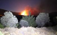 BEYOBA - Kazdağlarında Orman Yangını