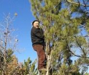 HASANLAR - Kesilen Ağacın Altında Kalan Köylü Hayatını Kaybetti