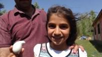 SABAH KAHVALTISI - Armut şeklindeki yumurta şaşırttı