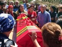 TERÖRİST CENAZESİ - HDP'li vekil terörist cenazesinde