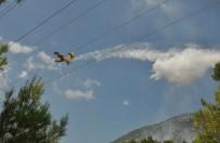 YANGIN HELİKOPTERİ - Manavgat'ta Orman Yangınında 5 Hektar Alan Zarar Gördü