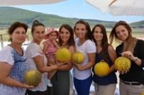BOŞNAK - Urla'da Mis Kokulu Kavun Festivali