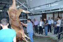 AHMET ÇAKıR - Darende'ye Yeni Yapılan Mezbahanede İlk Kesim Yapıldı