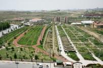 SABIKA KAYDI - Hobi Bahçesi Yeni Sahiplerini Arıyor