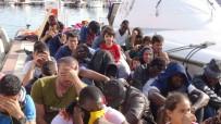 KAÇAK GÖÇMEN - 47 Kaçak Göçmen Yakalandı