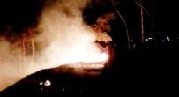YANGIN TÜPÜ - Dilek Balonu Mesire Alanında Yangın Çıkarttı