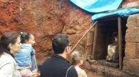 ŞENYURT - Kibele'yi 10 Bin Kişi Ziyaret Etti