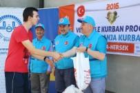 DIYANET İŞLERI BAŞKANLıĞı - TDV, 239 Bin 414 Hisse Kurban Kesti
