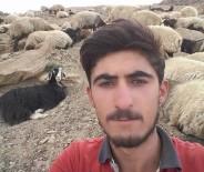 YILDIRIM DÜŞMESİ - Yıldırım Çarpan Genç Çoban Hayatını Kaybetti