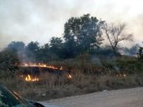 BOĞAZKÖY - Bursa'da Korkutan Yangın