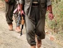 PKK TERÖR ÖRGÜTÜ - Milletin kaynaklarını terör örgütüne aktarmışlar