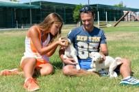 SOKAK KEDİSİ - Muratpaşa'da Sokak Hayvanları Sahiplendiriliyor