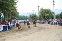 AT YARIŞLARI - 5. Mahalli At Yarışları, '15 Temmuz Demokrasi Şehitleri' Adıyla Yapılacak