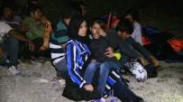 KAÇAK GÖÇMEN - Bodrum'da 42 Kaçak Göçmen İle 1 Organizatör Şüphelisi Yakalandı