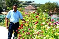 ALıŞKANLıK - Emcelli'nin Renk Cümbüşü Büyülüyor