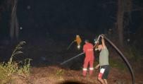ORMAN YANGINI - Dalaman'da Orman Yangını
