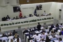İBRAHİM HAKKI - Meclisin Gündemi Trafik Oldu