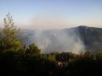 KAVAKLı - Kozan'da Çıkan Orman Yangınında 10 Hektarlık Alan Zarar Gördü