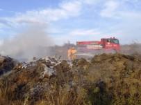 ORMAN İŞÇİSİ - Biga'da Anız Yangını