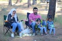 İRFAN TATLıOĞLU - Bursa'da Karadeniz Rüzgarı