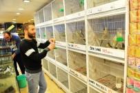 HAYVAN SEVERLER - Pet Shop Sahiplerine Sertifika Eğitimi Zorunlu