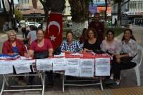 YOL HARITASı - Söke CHP Kadın Kollarından Manifestoya Destek Kampanyası