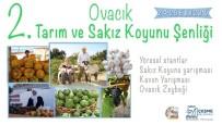AZIZ KOCAOĞLU - 2. Ovacık Tarım Ve Sakız Koyunu Şenliği Başlıyor