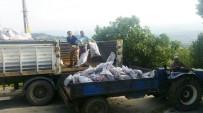 SOSYAL YARDıMLAŞMA VE DAYANıŞMA VAKFı - Hisarcık'ta 700 Aileye Bin Ton Kömür Yardımı