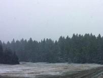 KAR YAĞıŞı - Bolu'ya mevsimin ilk karı yağdı