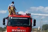 Burhaniye'de Ot Yangını