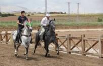 YARIŞ - Geleneksel Rahvan At Yarışları Erzurum'da Yapılacak