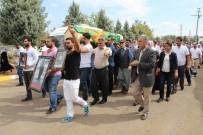 GAZİ YAŞARGİL - HDP'li vekiller terörist cenazesine katıldı