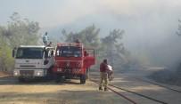 ORMAN YANGINI - Mersin Erdemli'de orman yangını!