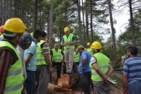 İŞ GÜVENLİĞİ - Orman Bölge Müdürlüğü, Aladağ'da 'Üretim Tatbikatı' Yaptı