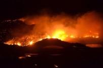 ORMAN YANGINI - Anamur'da Orman Yangını