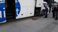 TÜRKMENISTAN - Bursa Jandarması Binlerce Aranan Suçluyu Yakaladı