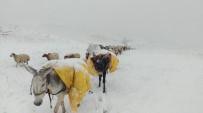MAHSUR KALDI - Kar Yağışı Peynir Üreticilerini Mağdur Etti