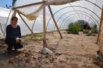MAHSUR KALDI - Tüm Emekleri Sele Kapılan Berna Ece Evciler Söğütçük Deresi'nin Islahını İstedi