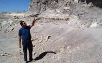 ANKARA ÜNIVERSITESI - Mamut Fosillerinin Çıktığı Bölgenin Sit Alanı Olması Talebi