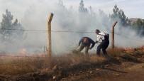 SOSYAL PAYLAŞIM - Orman Yangınına Vali Müdahale Etti!