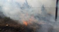 SOSYAL PAYLAŞIM - Yozgat'ta Orman Yangınını Vali Yurtnaç Bildirdi
