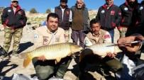 HASAN EKINCI - Baraj Gölünde Balık Yakalama Yarışması Heyecanı