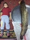 GÖKPıNAR - Denizli'de 130 Santim Uzunluğunda Yayın Balığı Yakalandı