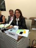 SOSYAL ADALET - Milletvekili Günay, Paris'de Suriyeli Mültecilere Yapılan Yardımları Anlattı