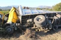 DİREKSİYON - Arı TIR kazasına neden oldu