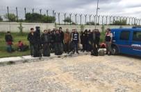 KAÇAK GÖÇMEN - Türkiye-Bulgaristan Sınır Hattında 106 Kaçak Göçmen Yakalandı
