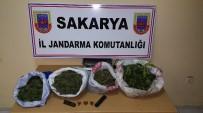 İL JANDARMA KOMUTANLIĞI - 4 İlçede Uyuşturucu Operasyonu